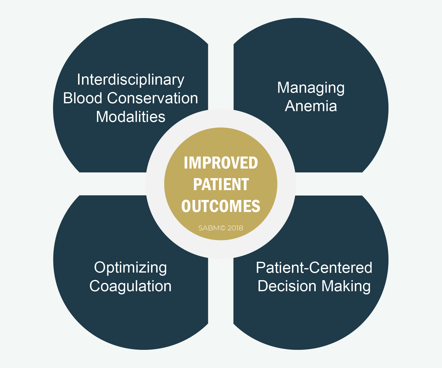 SABM Foundational Principles of Patient Blood Management